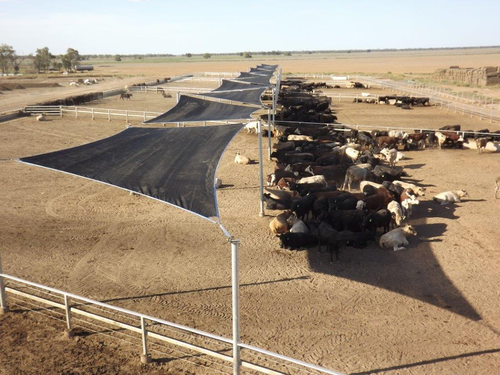 The Benefits of Livestock Shelters